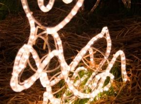Brailsford-Lights-37-of-42