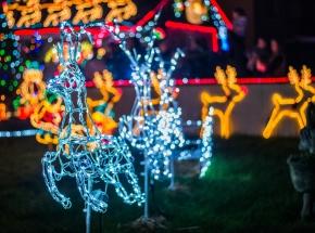 Brailsford-Lights-6-of-42